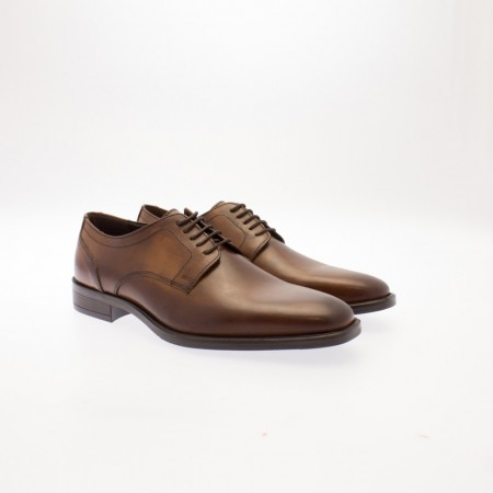 Playboy Shoe Brown 46